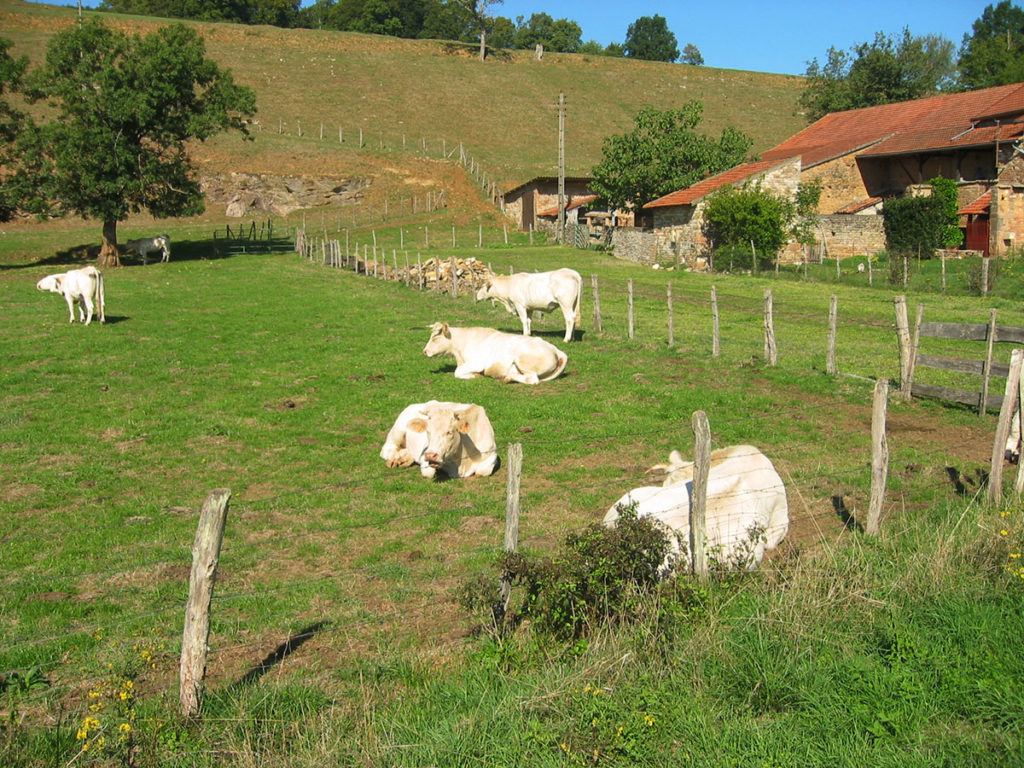 Week-end en Bourgogne La voie verte
