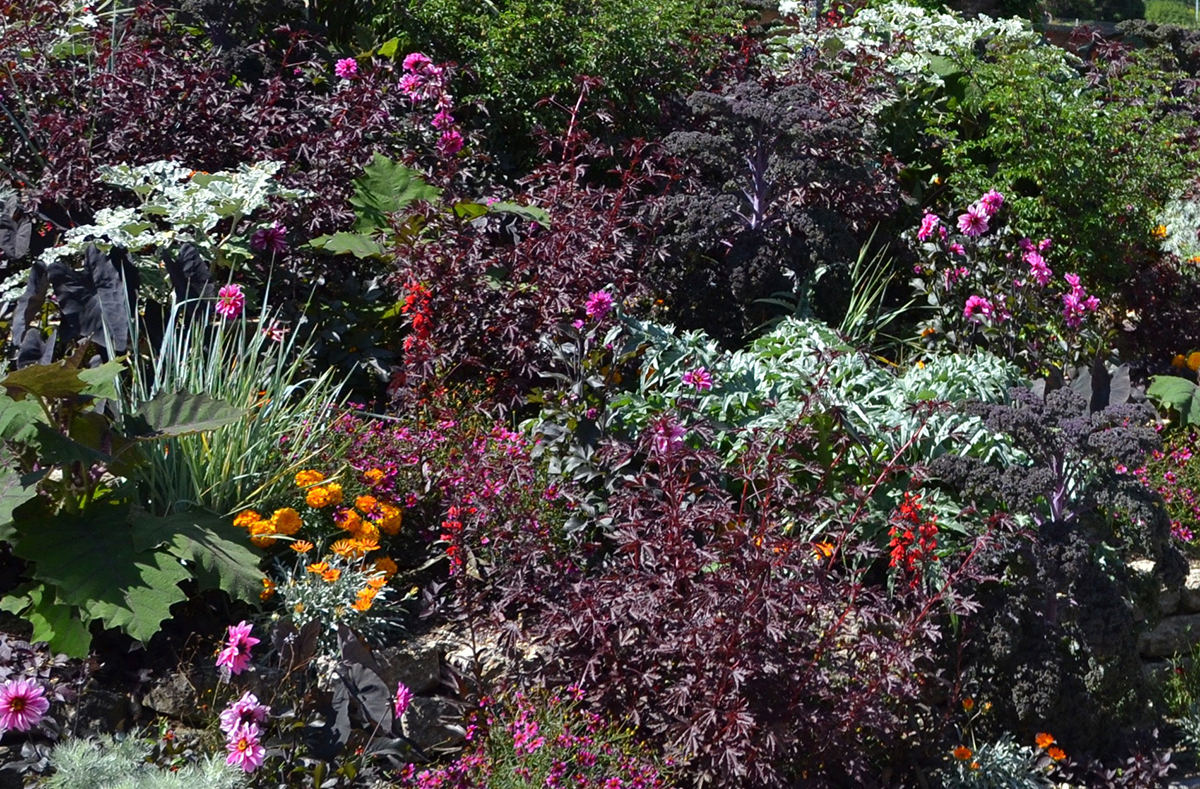 genve balade au jardin botanique - Jardin Botanique Geneve