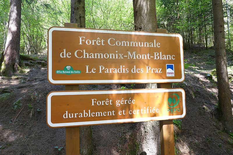 balade en famille Mont-blanc forêt chamonix