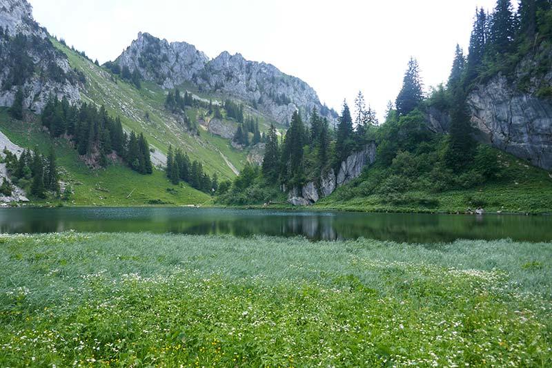 randonnee lac d arvouin haute-savoie abondance