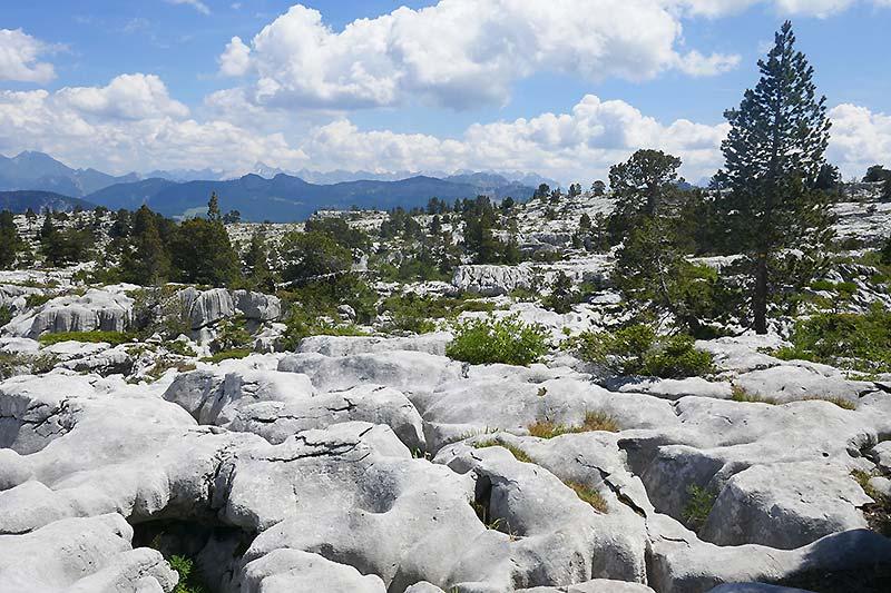Proche d'Annecy : randonnée au Parmelan