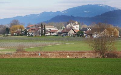 Genève : balades à Choulex, Corsier, Hermance…