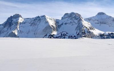 Plateau de Cenise, une balade douce et sauvage