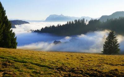 Webcams Haute-Savoie et Jura : balades au dessus du brouillard