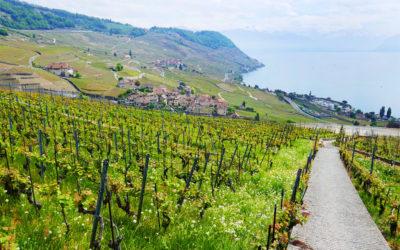 Suisse Canton de Vaud : balade en Riviera vaudoise